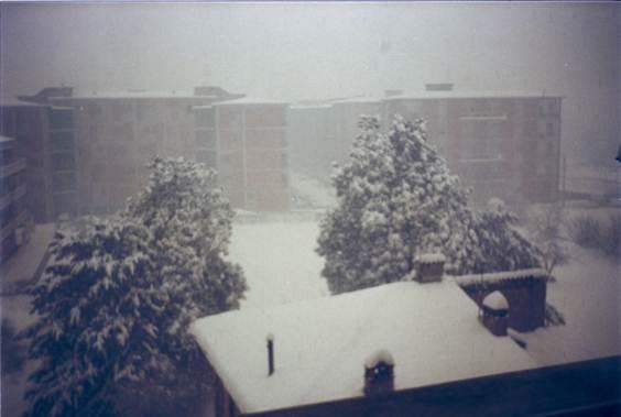 nevicata 16 gennaio 19850002.jpg