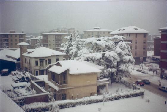 nevicata 16 gennaio 19850003.jpg